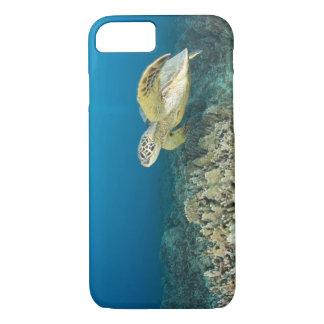 Coque iPhone 8/7 La tortue de mer verte, (des mydas de Chelonia),