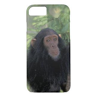 Coque iPhone 8/7 L'Afrique, Afrique de l'Est, Tanzanie, nourrisson