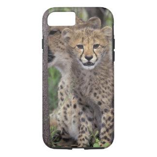 Coque iPhone 8/7 L'Afrique, Afrique du Sud, conserve de Phinda.