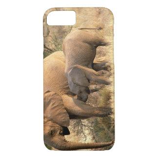 Coque iPhone 8/7 L'Afrique, Botswana, Moremi. Soins d'éléphant