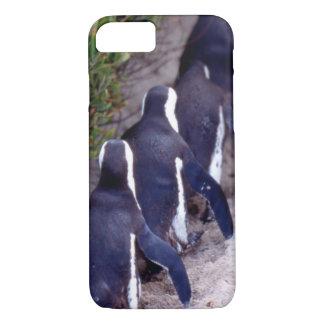 Coque iPhone 8/7 L'Afrique du Sud, ville de Simons. Suiviste.