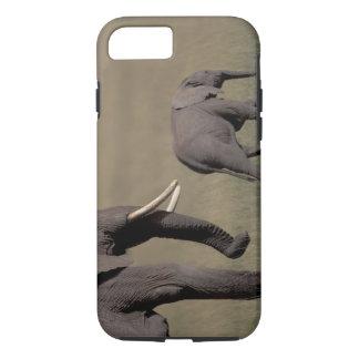 Coque iPhone 8/7 L'Afrique, Kenya, parc national d'Amboseli.