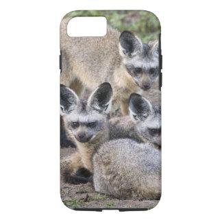 Coque iPhone 8/7 L'Afrique. La Tanzanie. Renards Batte-À oreilles