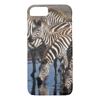 Coque iPhone 8/7 L'Afrique. La Tanzanie. Zèbres buvant chez Ndutu