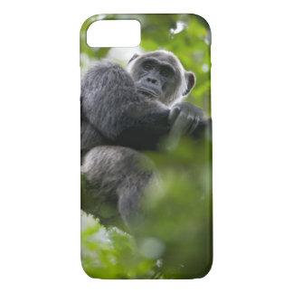 Coque iPhone 8/7 L'Afrique, Ouganda, réservation de forêt de
