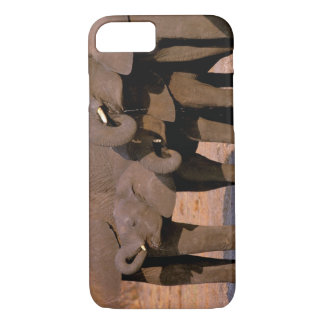 Coque iPhone 8/7 L'Afrique, Tanzanie, parc national de Tarangire