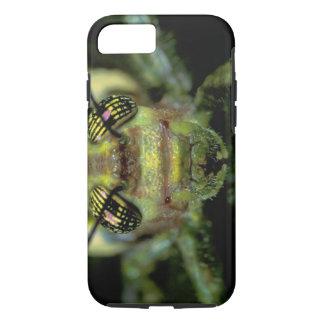 Coque iPhone 8/7 L'Amérique Centrale, Panama, île de Barro le