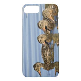 Coque iPhone 8/7 L'Amérique du Nord, Canada, Colombie-Britannique,