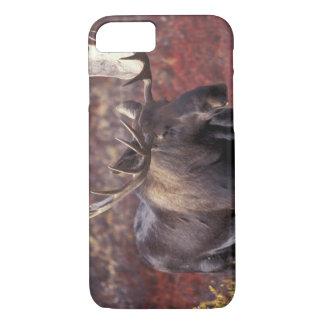Coque iPhone 8/7 L'Amérique du Nord, Etats-Unis, Alaska, Denali NP.