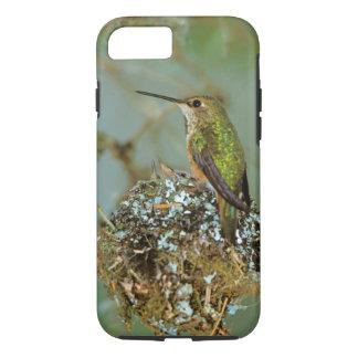 Coque iPhone 8/7 L'Amérique du Nord, Etats-Unis, Alaska. Oiseau