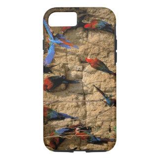 Coque iPhone 8/7 L'Amérique du Sud, Pérou, parc national de Manu,