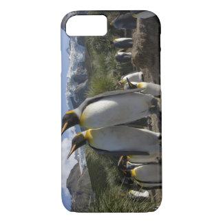 Coque iPhone 8/7 L'Antarctique, île du sud de la Géorgie (R-U), roi
