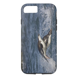 Coque iPhone 8/7 L'Antarctique, Îles Shetland du sud, Gourdon