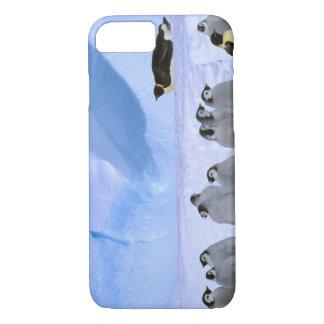 Coque iPhone 8/7 L'Antarctique, territoire antarctique australien,