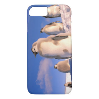 Coque iPhone 8/7 L'Antarctique, territoire antarctique australien,