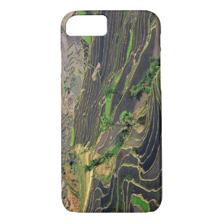 Coque iPhone 8/7 L'Asie, Chine, Yunnan, Honghe. Terrasses de riz