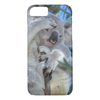 Coque iPhone 8/7 L'Australie, koala Phasclarctos Cinereus)