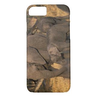 Coque iPhone 8/7 Le Botswana, réservation de jeu de Moremi,