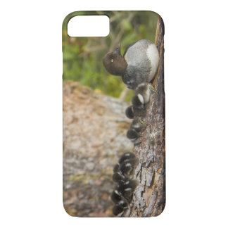Coque iPhone 8/7 Le Canada, Colombie-Britannique, Goldeneye commun,