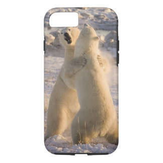 Coque iPhone 8/7 Le Canada, Manitoba, baie de Hudson, Churchill. 2