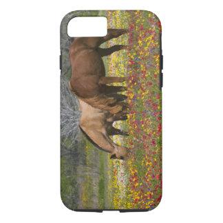 Coque iPhone 8/7 Le cheval quart dans le domaine des fleurs