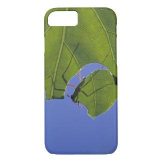 Coque iPhone 8/7 Le Costa Rica, fourmis de coupeur de feuille,