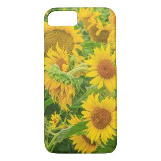 Coque iPhone 8/7 Le grand champ des tournesols s'approchent du lac