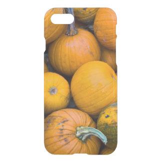 Coque iPhone 8/7 Le Massachusetts, Salisbury, citrouilles, automne