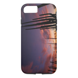 Coque iPhone 8/7 Le Mexique, Baja del Norte, ressortissant 3 de