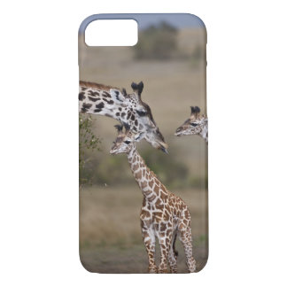 Coque iPhone 8/7 Le wie de girafe de Maasai (girafe Tippelskirchi)