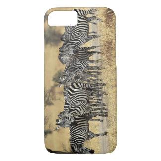 Coque iPhone 8/7 Le zèbre de Burchell, burchellii d'Equus,