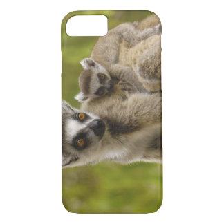 Coque iPhone 8/7 lémurs Anneau-coupés la queue (catta de lémur)