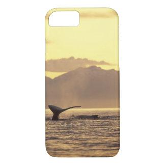 Coque iPhone 8/7 Les Etats-Unis, Alaska, baleine de bosse