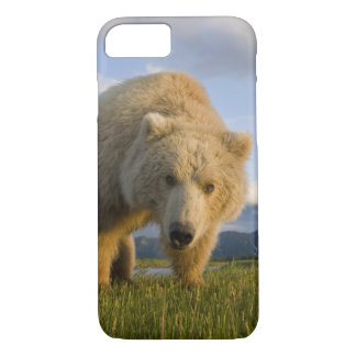 Coque iPhone 8/7 Les Etats-Unis, Alaska, parc national de Katmai,