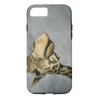 Coque iPhone 8/7 Les Etats-Unis, le Texas, région fossile de faune