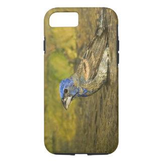 Coque iPhone 8/7 Les Etats-Unis, le Texas, vallée de Rio Grande.