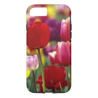 Coque iPhone 8/7 Les Etats-Unis, Orégon, vallée de Willamette. Beau