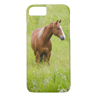 Coque iPhone 8/7 Les Etats-Unis, Washington, champ de cheval au
