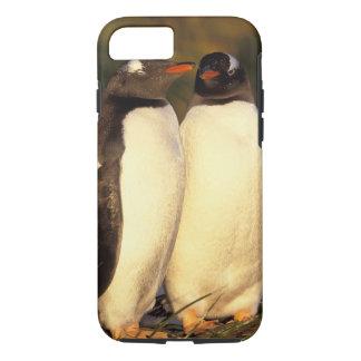 Coque iPhone 8/7 Les îles Malouines. Pingouins de Gentoo.