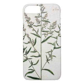 """Coque iPhone 8/7 L'estragon, plaquent 116 """"d'un de fines herbes"""