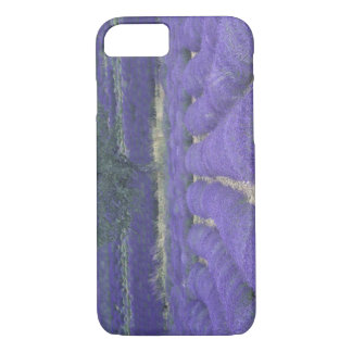 Coque iPhone 8/7 L'Europe, France, Provence, Sault, gisements 2 de