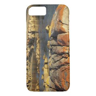 Coque iPhone 8/7 Lichen orange sur des roches, baie de Binalong,