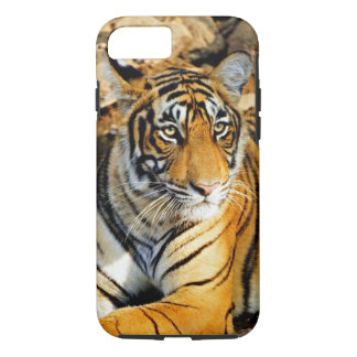 Coque iPhone 8/7 L'Inde, Sawai Madhopur, ressortissant de