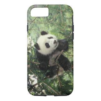 Coque iPhone 8/7 L'petit animal de panda géant grimpe à un arbre,