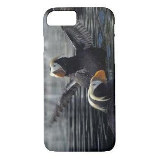 Coque iPhone 8/7 Macareux tuftés de l'Alaska