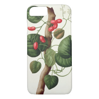 "Coque iPhone 8/7 Menispermum de ""Phytographie Medicale"" par Joseph"