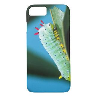 Coque iPhone 8/7 Mite Caterpillar, Callosamia de PROMETHEUS