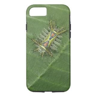 Coque iPhone 8/7 Mite de Saddleback, espèces d'Acharia, toxiques