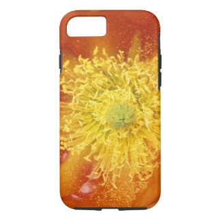 Coque iPhone 8/7 N.A., Etats-Unis, Arizona, Tucson, désert 3 de
