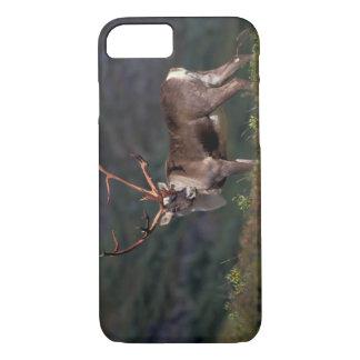 Coque iPhone 8/7 Na, Etats-Unis, Alaska, Denali NP, caribou de